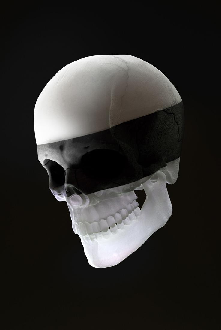 Matthew Encina skull