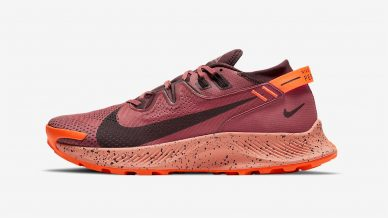 Nike Pegasus Trail 2 GORE-TEX leManoosh industrial design blog and online courses
