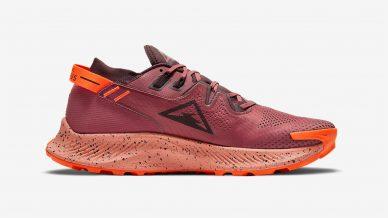 Nike Pegasus Trail 2 GORE-TEX leManoosh industrial design blog and online courses