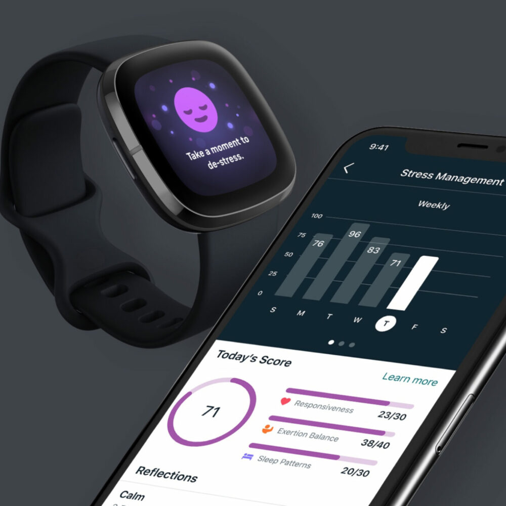 Bronze - Digital Interaction - Fitbit Stress Management Experience